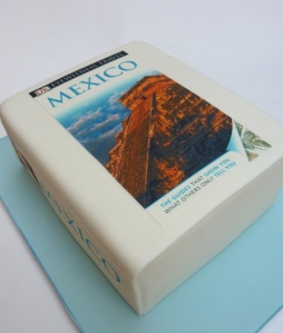 Travel Book Cake